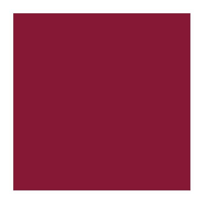 pintura mate rojo escarlata 2,5 litros