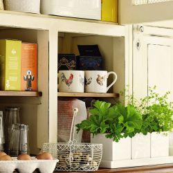 tres macetas cerámicas de diseño ideal para hierbas aromáticas