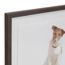 cuadro enmarcado de perro Jack Russel con pelota de diseño