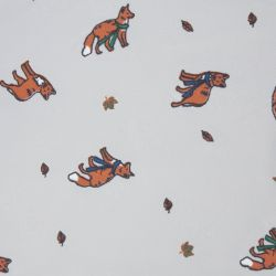Paraguas gris con zorros