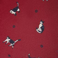 Paraguas rojo con gatos