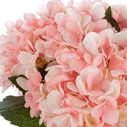 Hortensias rosas en jarrón globo