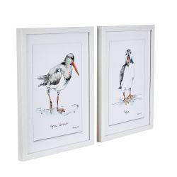 2 láminas enmarcadas Puffins 31x25