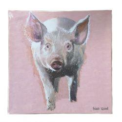 Lienzo Pig