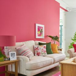pintura rosa pomelo