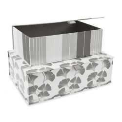 2 cajas Georgina