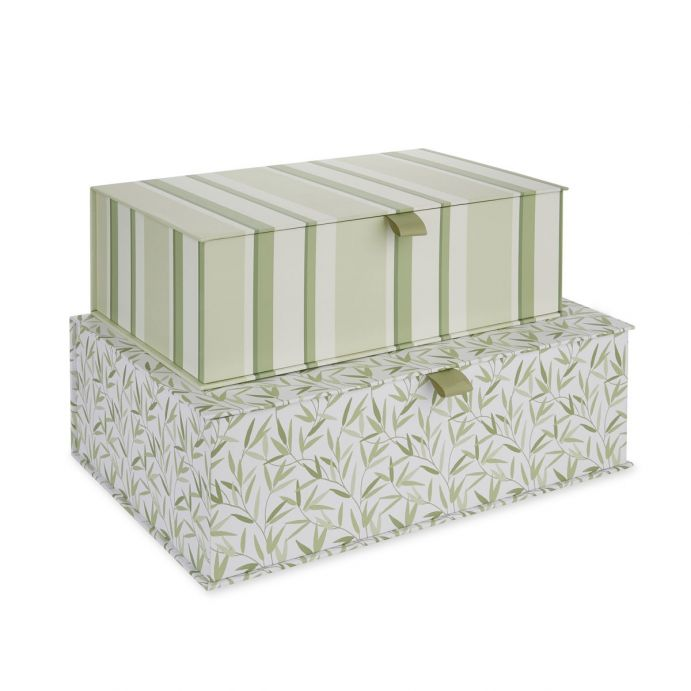 2 cajas Willow Leaf